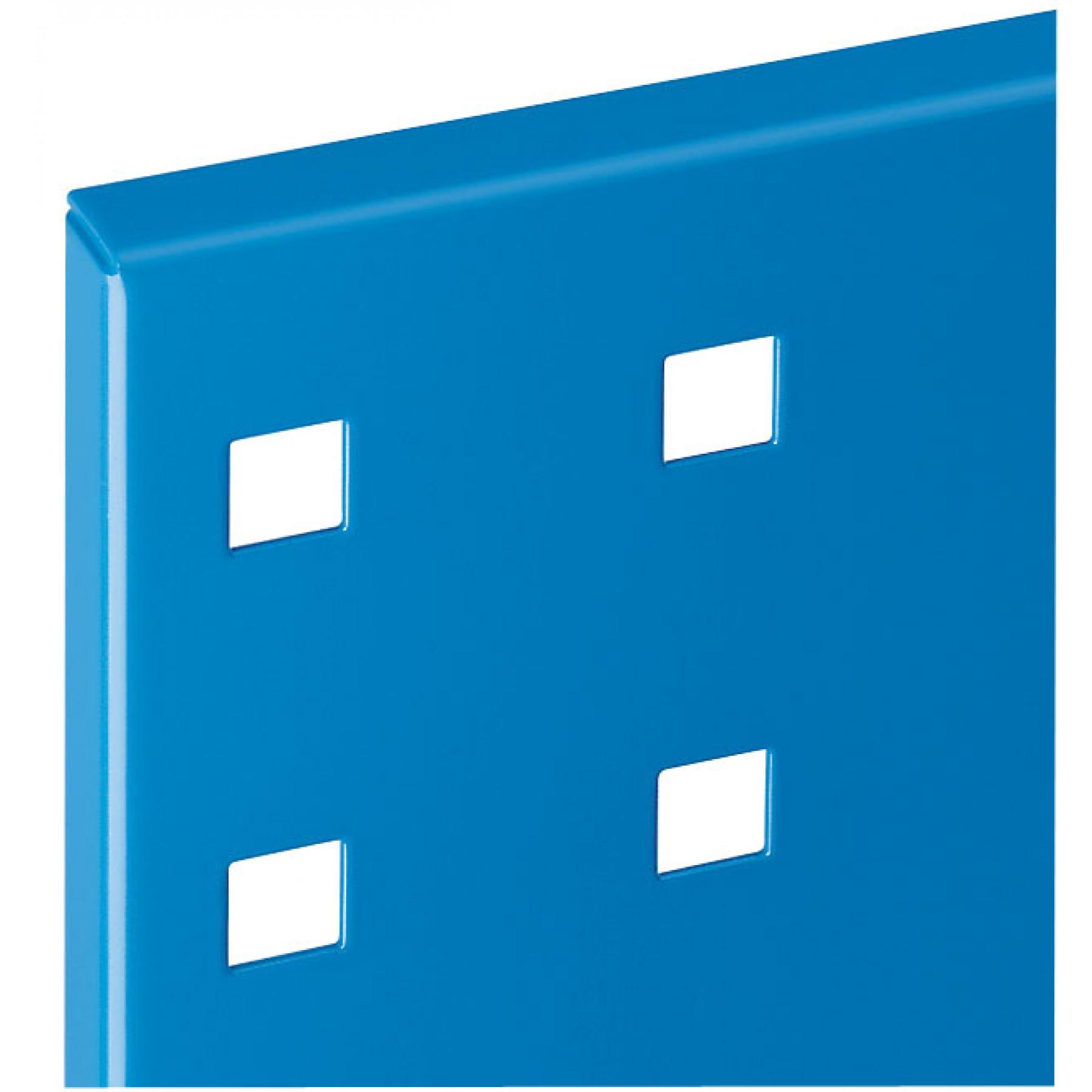 ®RasterPlan perfopaneel-500x450 mm-RAL 5015 hemelsblauw